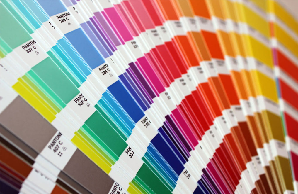 color-directrices